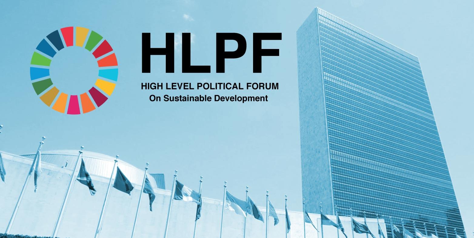 Locating the Agenda 2030: Cybervolunteers at the UN Sustainable Development Forum in New York